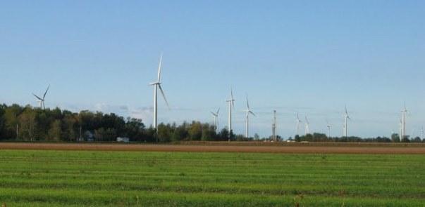 Nikki Horton's house dwarfed by wind Turbines in Port Alma