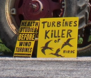 Turbines: Killer of Birds