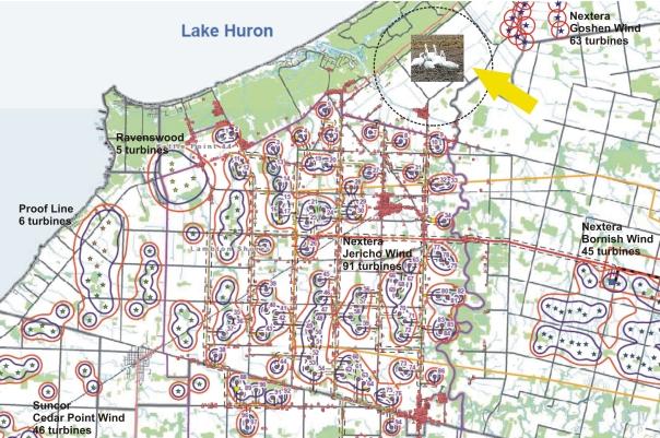 Thedford bog swan turbine map
